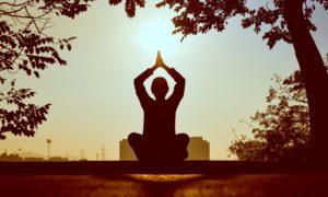 Yoga Stein